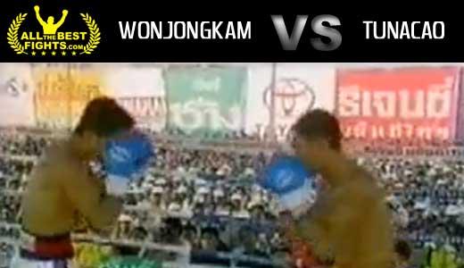 ko_wonjongkam_tunacao_allthebestfights