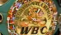 hasegawa_vs_gonzalez_fight_news_wbc_allthebestfights