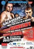 konecny_vs_larbi_poster_allthebestfights