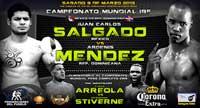 salgado_vs_mendez_2_poster_2013_allthebestfights