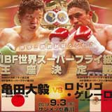 http://www.allthebestfights.com/wp-content/uploads/2013/09/kameda-vs-guerrero-fight-video-pelea-2013-poster.jpg
