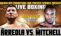 mitchell-vs-arreola-fight-video-2013-poster