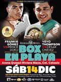 thompson-vs-chavez-fight-video-pelea-2013-poster