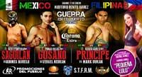rojas-vs-nebran-fight-video-pelea-2014-poster