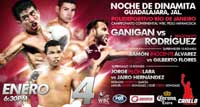 lopez-vs-rodriguez-fight-video-pelea-2014-poster