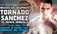 sanchez-vs-demecillo-2014-01-18-poster