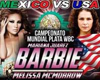 juarez-vs-mcmorrow-poster-2014-02-22