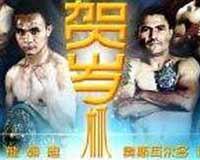 zhong-vs-novoa-poster-2014-02-05