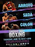 arroyo-vs-saludar-poster-2014-06-19