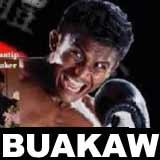 buakaw-vs-freitas-muay-thai-macau-poster