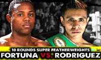 fortuna-vs-rodriguez-poster-2014-05-31