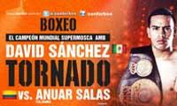 sanchez-vs-salas-poster-2014-08-30