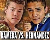 kameda-vs-hernandez-poster-2014-11-01
