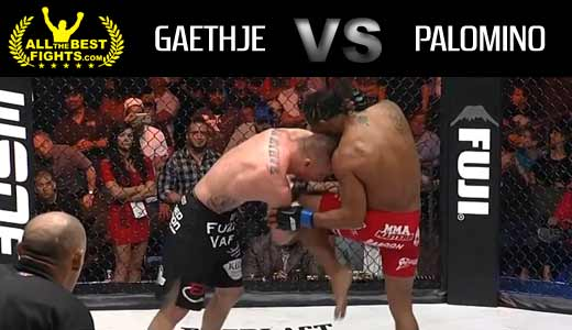 mma-foty-2015-gaethje-vs-palomino-full-fight-video
