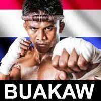 buakaw-vs-yan-bin-quanwei-wmc-2015-poster