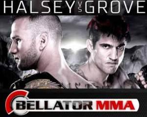 halsey-vs-grove-bellator-137-poster