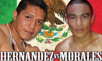 hernandez-vs-morales-poster-2015-08-07