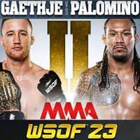 gaethje-vs-palomino-2-wsof-23-poster