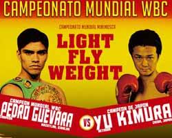 guevara-vs-kimura-poster-2015-11-28