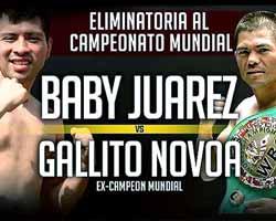 juarez-vs-novoa-3-poster-2016-03-19