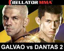 galvao-vs-dantas-2-bellator-156-poster