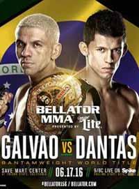 halsey-vs-salter-bellator-156-poster