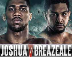 joshua-vs-breazeale-poster-2016-06-25