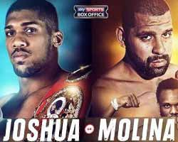 joshua-vs-molina-fight-video-poster-2016-12-10
