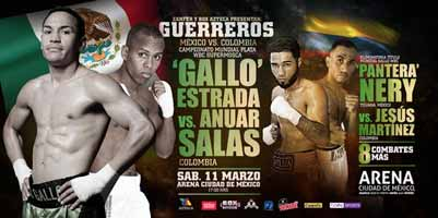 estrada-vs-salas-full-fight-video-poster-2017-03-11