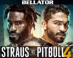 straus-vs-freire-4-full-fight-video-bellator-178-poster