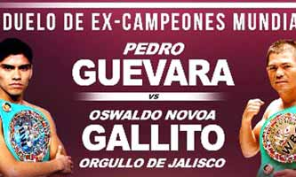 guevara-vs-novoa-full-fight-video-poster-2017-05-13