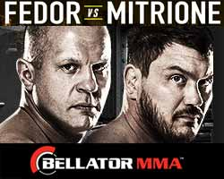 fedor-vs-mitrione-full-fight-video-bellator-180-poster