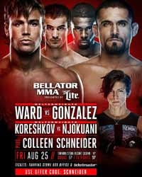 koreshkov-vs-njokuani-full-fight-video-bellator-182-poster
