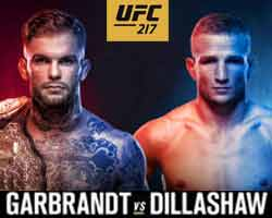 garbrandt-dillashaw-full-fight-video-ufc-217-poster