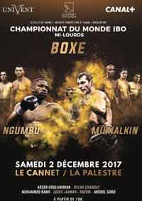 ngumbu-mikhalkin-3-full-fight-video-poster-2017-12-02