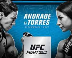 andrade-torres-fight-ufc-on-fox-28-poster