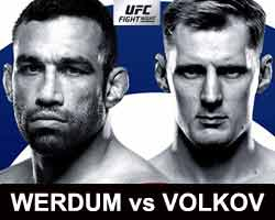 werdum-volkov-fight-ufc-fight-night-127-poster