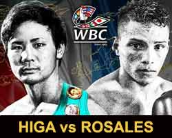 higa-rosales-fight-poster-2018-04-15