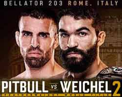 freire-weichel-2-fight-bellator-203-poster