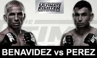 benavidez-perez-fight-ufc-tuf-28-finale-poster