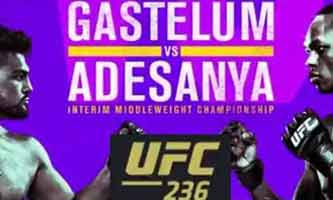 gastelum-adesanya-fight-ufc-236-poster