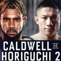 caldwell-horiguchi-2-fight-bellator-222-poster