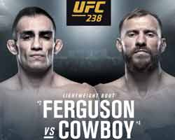 ferguson-cerrone-fight-ufc-238-poster