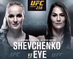 shevchenko-eye-fight-ufc-238-poster