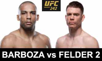 felder-barboza-2-fight-ufc-242-poster
