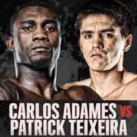 adames-teixeira-fight-poster-2019-11-30