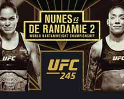 nunes-de-randamie-2-fight-ufc-245-poster