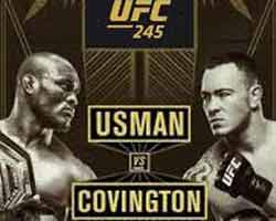 usman-covington-fight-ufc-245-poster