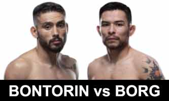borg-bontorin-fight-ufc-fight-night-167-poster