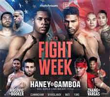 hrgovic-booker-full-fight-video-poster-2020-11-07